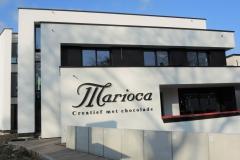 Marioca4